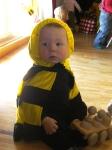 Mini-Bienen_5